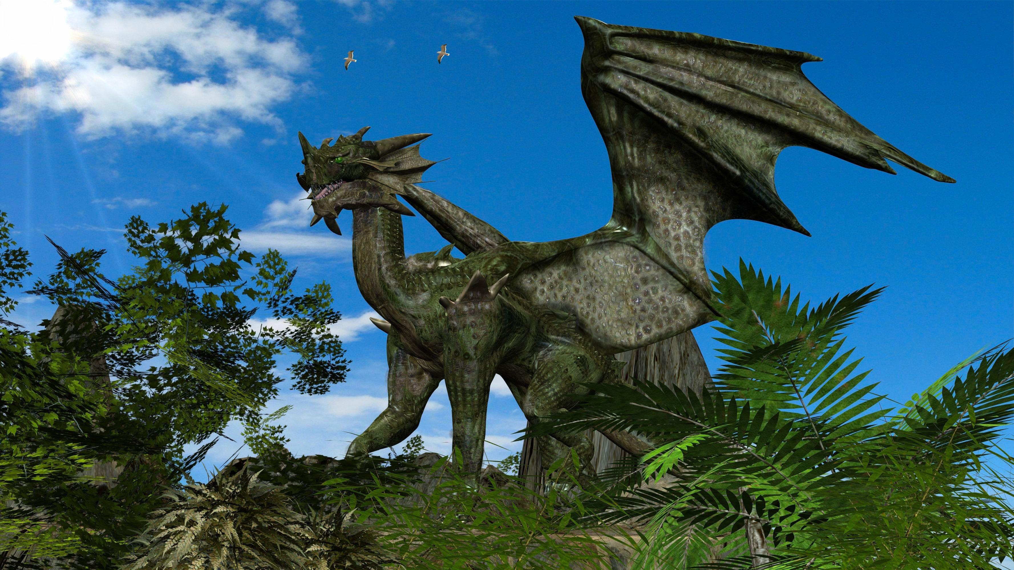 HIll Dragon