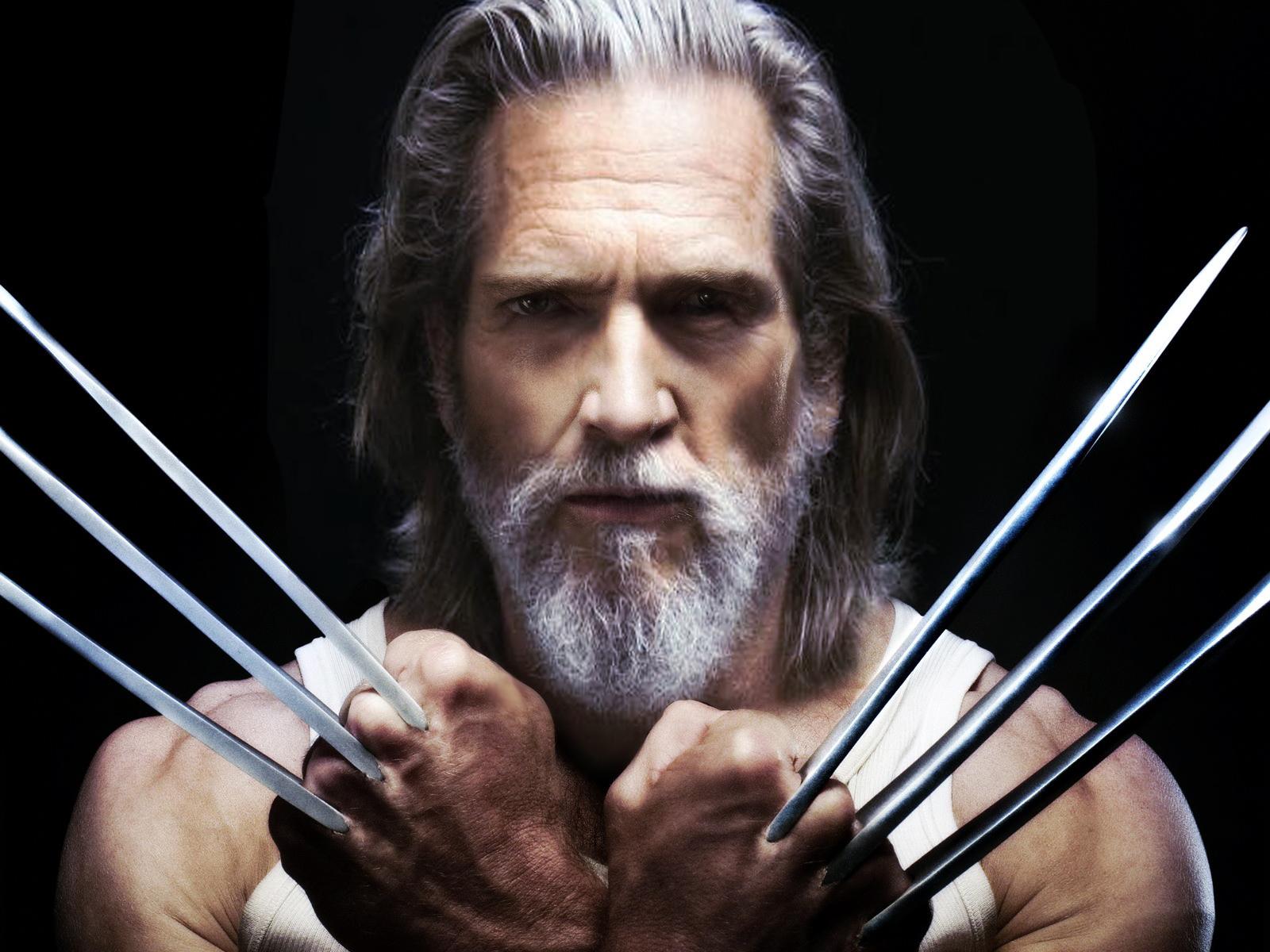 Old Wolverine