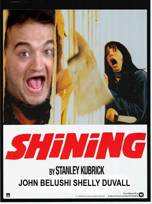 DDNN W2 -The Shining