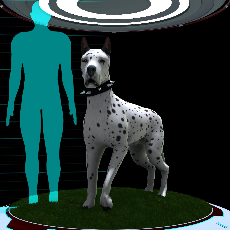 G5SG Animal Series, Canine Domestic.