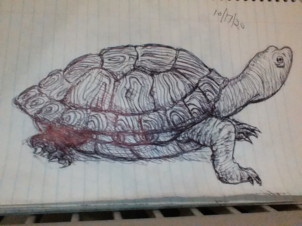Inktober #5: Turtle