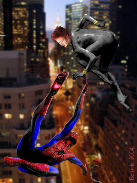 Spiderman & Black Widow by Brick