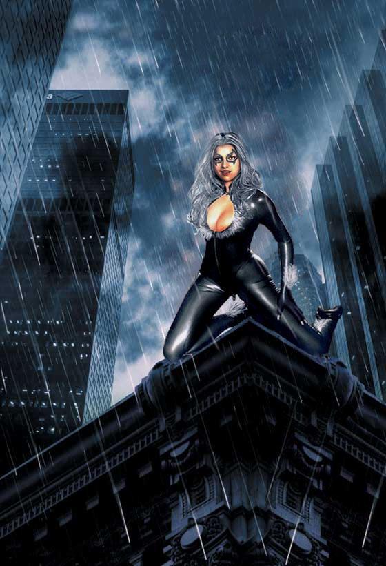 Black Cat: Evening Rain