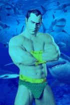 The Avengers: Prince Namor the Sub-Mariner