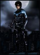Ian Somerhalder as Nightwing