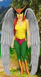 The Justice Society of America: Hawkgirl
