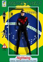 BRaZZZil's Dolls 3 - Nightwing