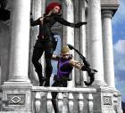 Hawk & Widow
