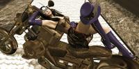 Steampunk Lady Heromorph