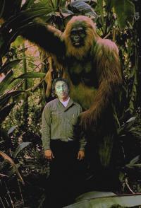 """Gene Wilder Tribute : """"Tropical Yeti"""""""