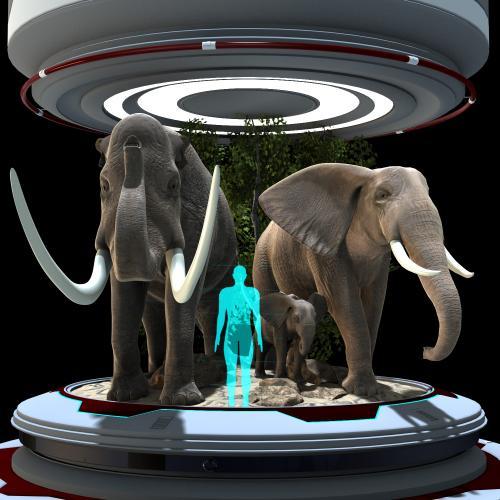 G5SG Animal Series, Elephant