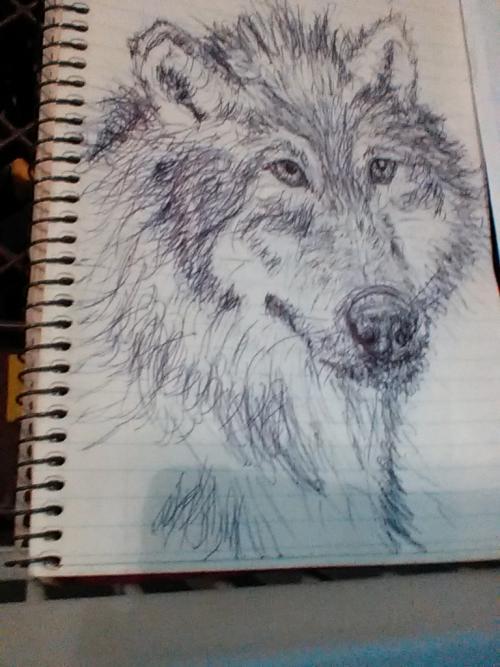 Inktober #6: Wolf
