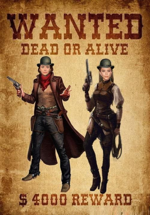Wanted:The Trouble Twins