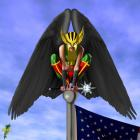 Hawkgirl she watch around! or bird in the flagpole!