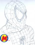 Spidey Close-Up