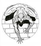 Spiderman Drawing.